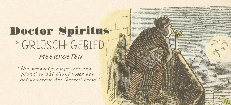 Het verschil tussen een meerkoet-mannetje en een meerkoet-vrouwtje: Doctor Spiritus neemt je mee naar 'Grijsch gebied'